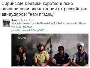 Умеренные террористы выразили обеспокоенность