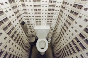 Туалет эксгибициониста